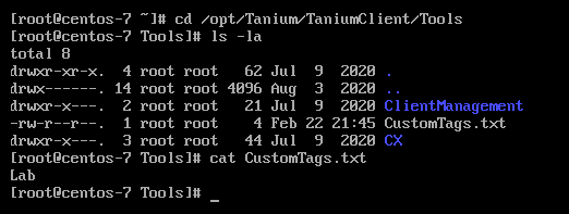 Deploying the Tanium Client to Linux endpoints